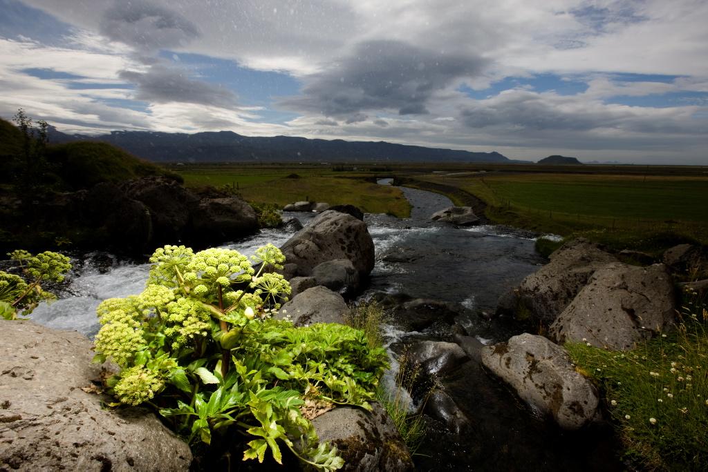 ÞIngvellir, vatn, náttúra